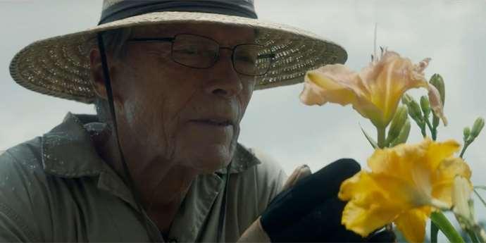 Kino Seniorů za 60,-